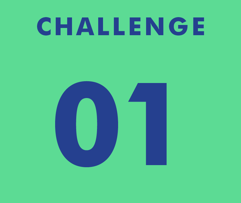 CHALLENGE 01